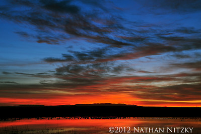 Sunrise at the Flight Deck, Bosque del Apache NWR, Socorro NM