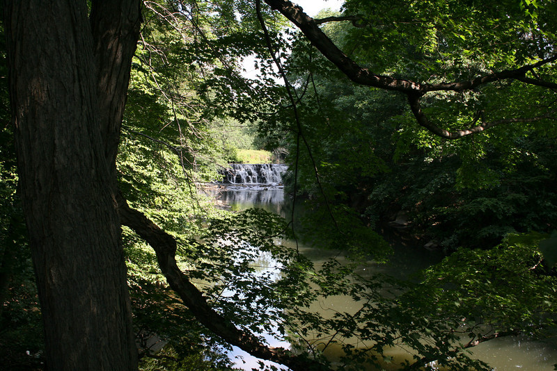 Bronx_Zoo-2