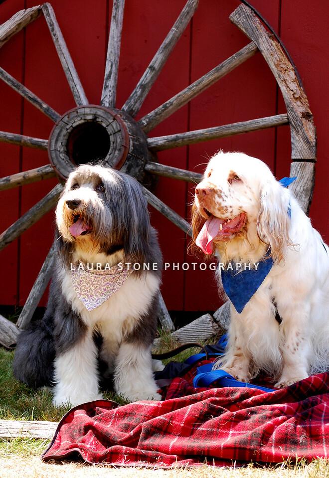 Rosie and Carlisle