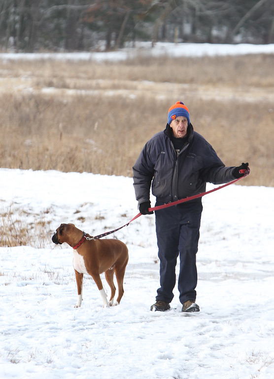 . James Bentley of Westford, with his boxer Rocky, heads for his car after a walk around the cranberry bog (no longer farmed as of 2017) on Curve Street in Carlisle. It\'s a very popular dog-walking loop. (SUN/Julia Malakie)