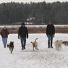 Dogs and their owners walk around the cranberry bog (no longer farmed as of 2017) on Curve Street in Carlisle. It's a very popular dog-walking loop. From left, Debbie Kritzler of Chelmsford, David Scarbro of Carlisle, and Jay Patrick of Carlisle. (SUN/Julia Malakie)