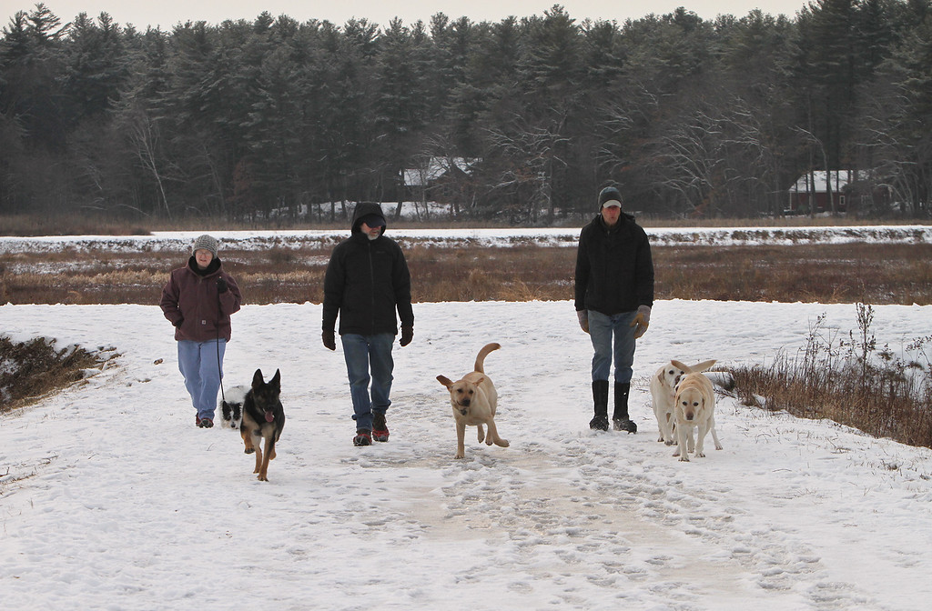 . Dogs and their owners walk around the cranberry bog (no longer farmed as of 2017) on Curve Street in Carlisle. It\'s a very popular dog-walking loop. From left, Debbie Kritzler of Chelmsford, David Scarbro of Carlisle, and Jay Patrick of Carlisle. (SUN/Julia Malakie)