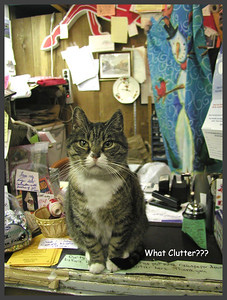 P-V-0014 What Clutter