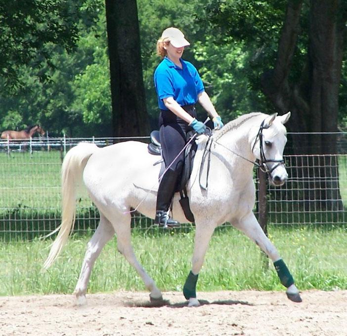 veni & chance training at hidden acres. photo by lisa head.