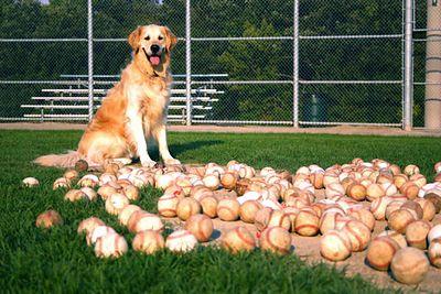 CHARLIE WITH HIS BASEBALLS