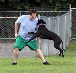 Joshua Baker of Tyngsboro plays with his Lab mix, Eisen, at Chelmford Dog Park.  (SUN/Julia Malakie)