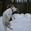 Catching snowballs!!!  :-)