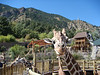 Giraffes edited