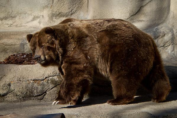 Cleveland Zoo 2011