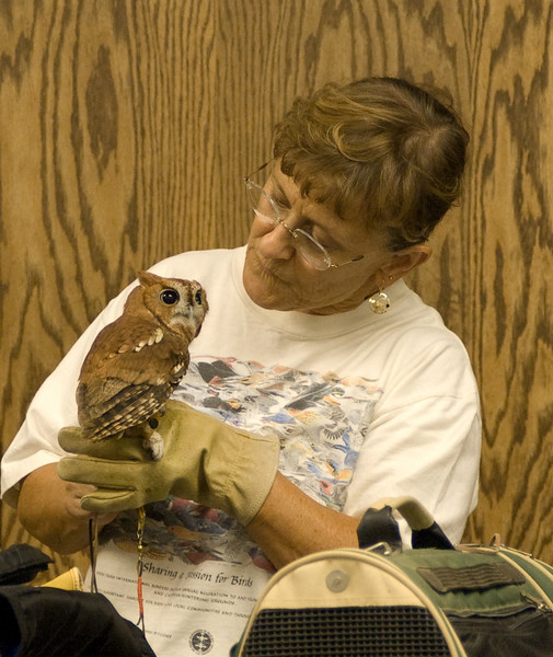 Katie Cottrell with Peanut - red Screech Owl.  Poor Peanut has bad cataracts in both eyes.