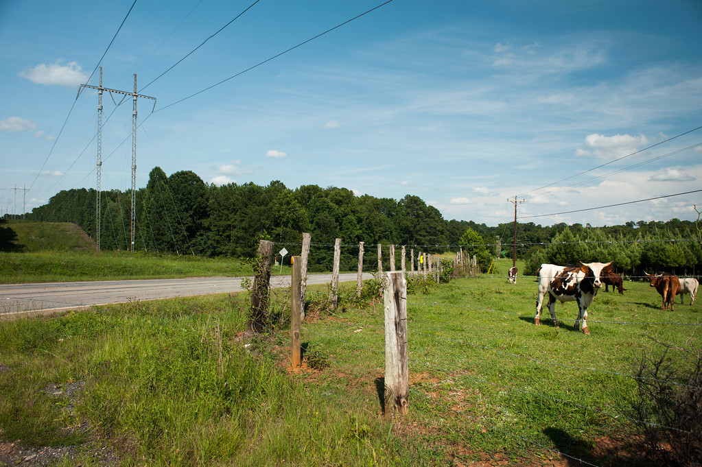 Oglethorpe County (GA) July 2017