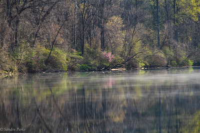 4-16-16: morning on the North River