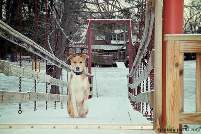 1-24-12: Max on the bridge