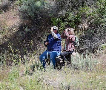 Daggett Creek field trip