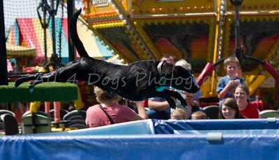 Davis County Fair 2011