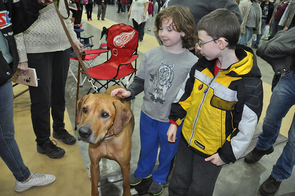 Detroit Kennel Show