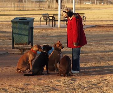Dog Park 12-14-14