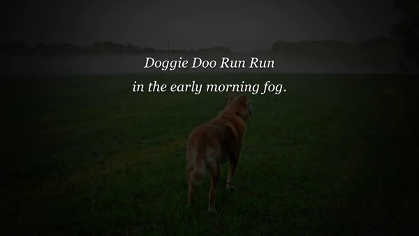 Doggy Doo Run Run - The Villages