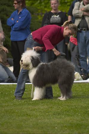 Dog Show, Prague 8.5.2004
