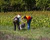 Hagen Field testing 092714-11 (1 of 1)