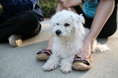 Max at Jamies feet