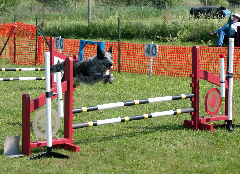 Bentley_Jump2