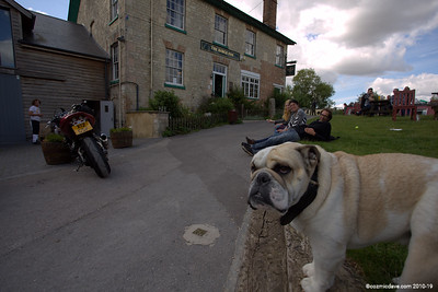Monty welcomes you to The Barge Inn, Honeystreet, Wiltshire