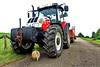 Rocco tractor