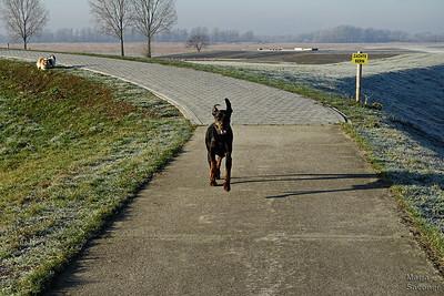 Prachtig weer voor een wandeling
