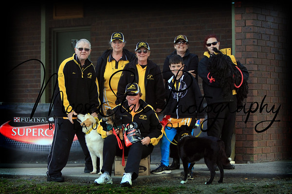 Flyball Nationals 2013 - Team Photos