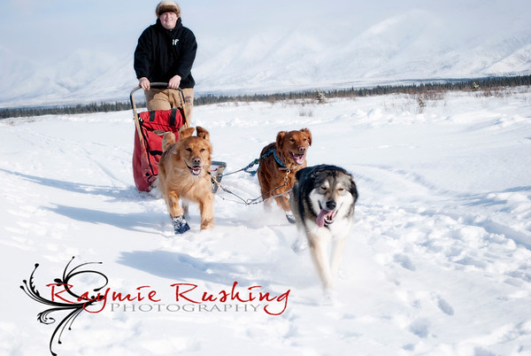Mushing March