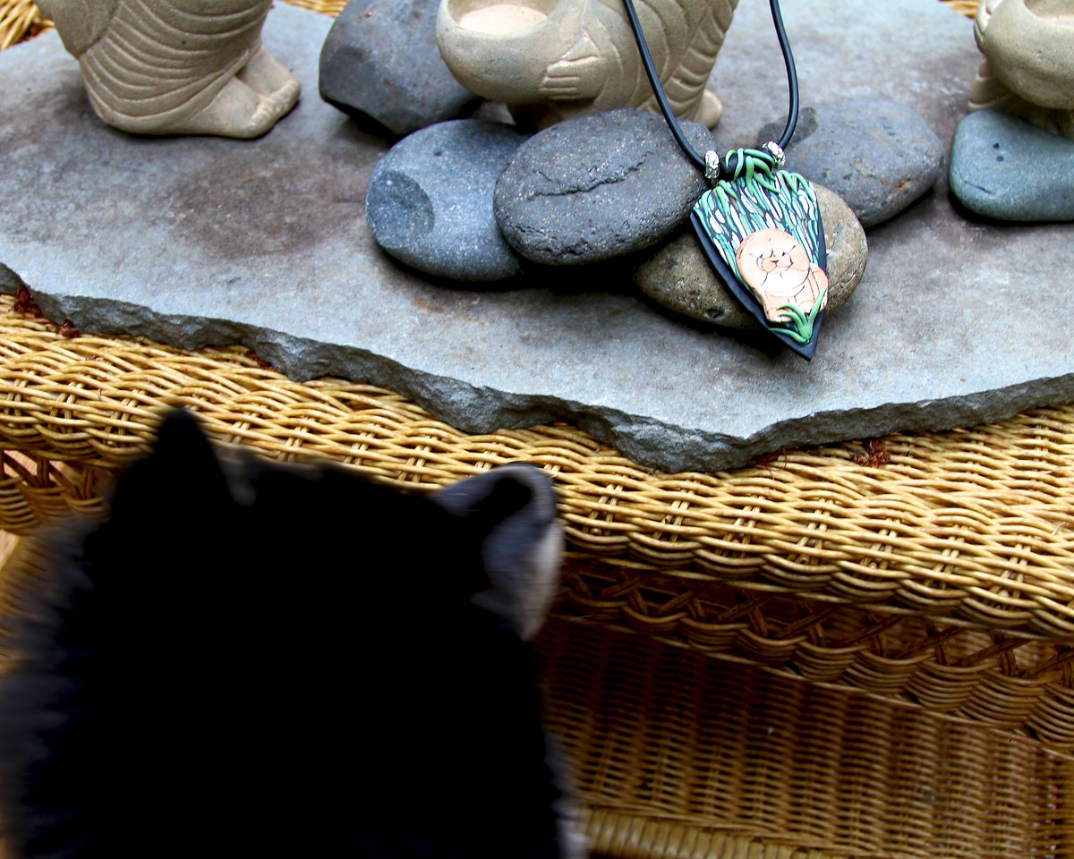 Onni 13 weeks old  7-18-12 -ONNI SPIES THE PENDANT ON THE TABLE  http://www.facebook.com/ONNItheLAPPIE