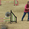 Pals 'N Paws Agility Trials