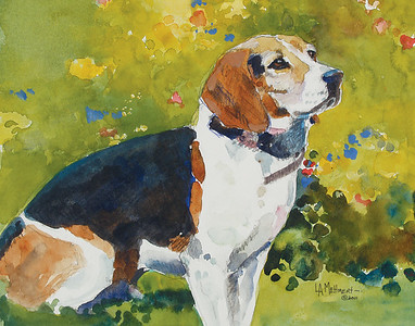 Beagle in the Garden