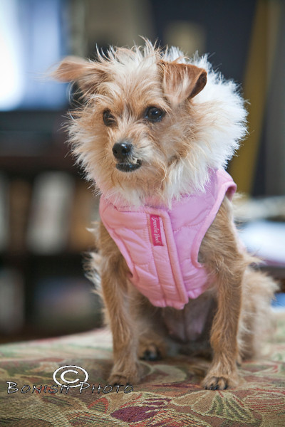 Little with her Winter Jacket - Photo by Cindy Bonish
