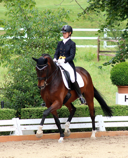 Dressage Prangins June 2015