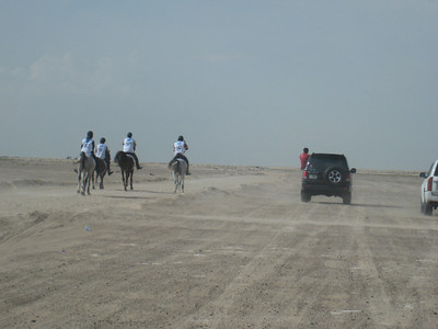 The Dubai Endurance Stables team set out on the green loop through the desert near Bab al Shams.