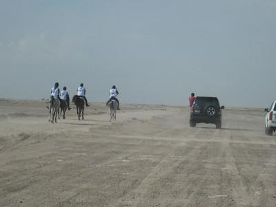 The Dubai Endurance Stables team set out on the green loop through the desert near Bab al Shams.