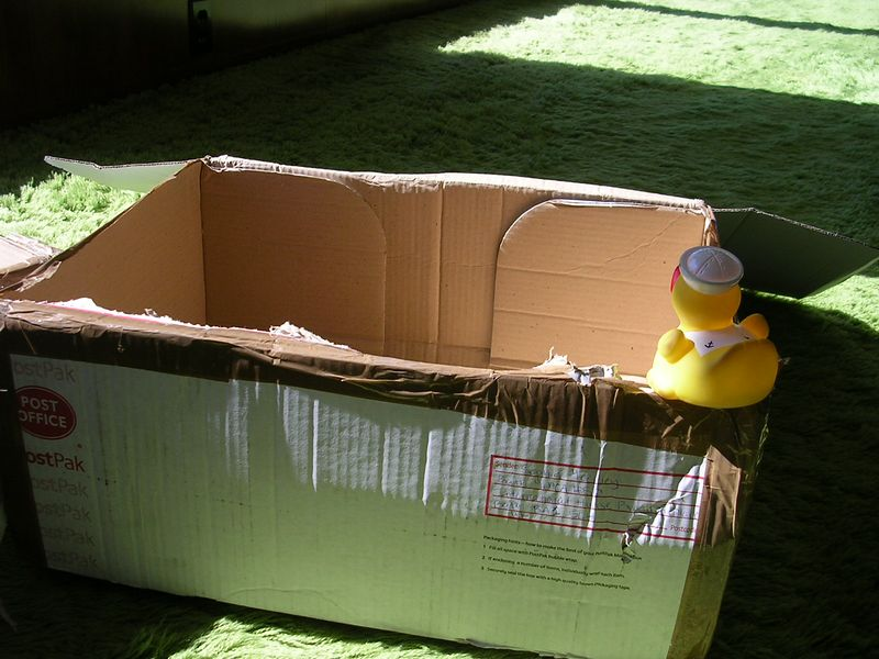The second box didn't have pirate in it either.  Duck was beginning to worry that he would never find his friend.