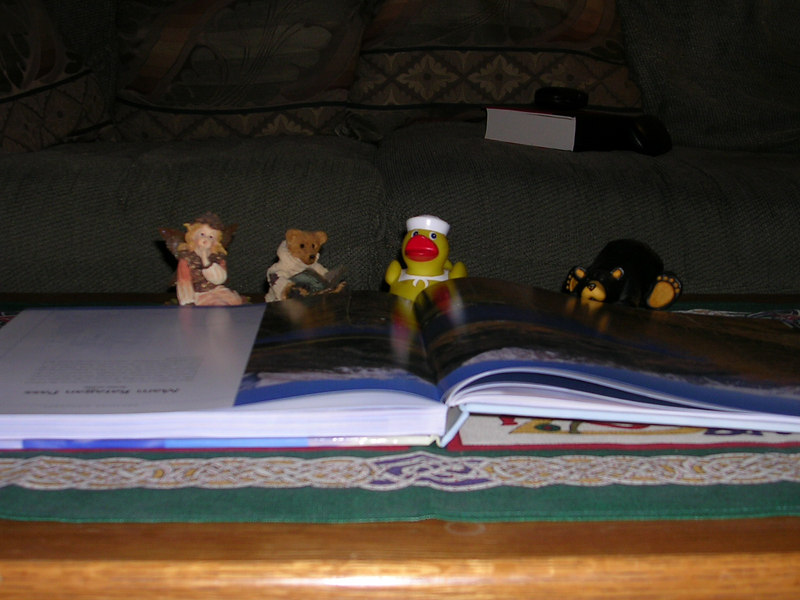 He's reading some guide books so that he can better understand the Alaska wilderness.  His new bear friends help him out.