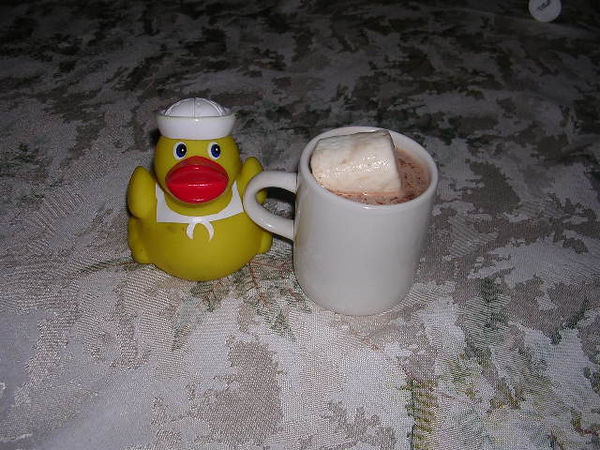 a nice cup of hot chocolate