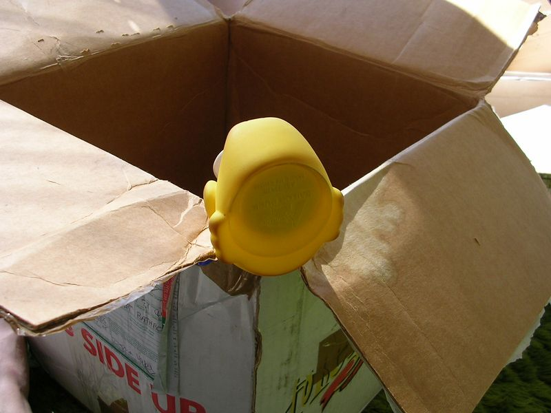 He peered into the first box, but found no one.