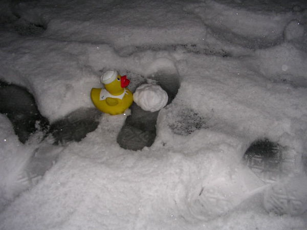 He tries to make a snow duck.  Here he is with the body