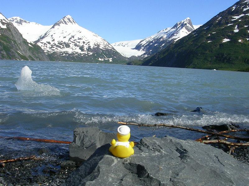 Portage Glacier.  Duck still wants to go visit it.