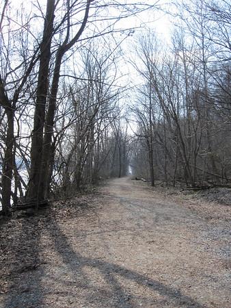 Eagles at Conowingo Dam and Trail
