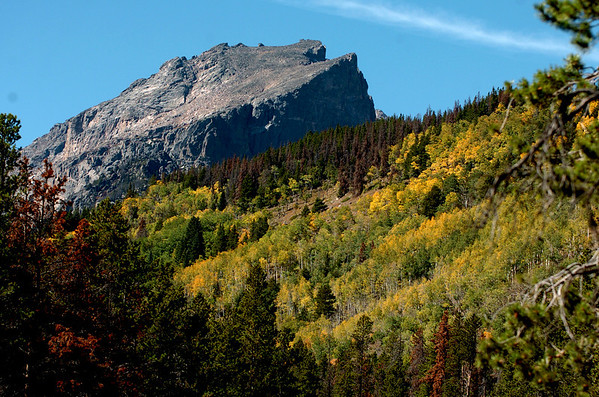 """The aspen begin changing color near Bear Lake in Rocky Mountain National Park on September 24, 2010.<br /> For more photos and a video, go to  <a href=""""http://www.dailycamera.com"""">http://www.dailycamera.com</a><br /> Cliff Grassmick / September 24, 2010"""