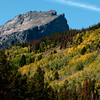 "The aspen begin changing color near Bear Lake in Rocky Mountain National Park on September 24, 2010.<br /> For more photos and a video, go to  <a href=""http://www.dailycamera.com"">http://www.dailycamera.com</a><br /> Cliff Grassmick / September 24, 2010"