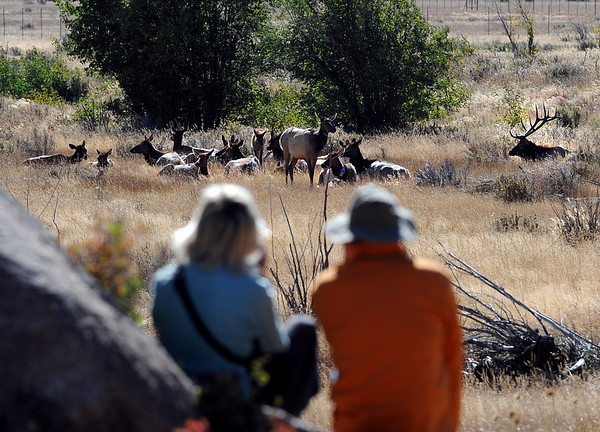 "Ulli Limpitlaw, left, and Dan Ganskow, both of Greeley, watch Elk in Moraine Park n Rocky Mountain National Park on September 24, 2010.<br /> For more photos and a video, go to  <a href=""http://www.dailycamera.com"">http://www.dailycamera.com</a><br /> Cliff Grassmick / September 24, 2010"
