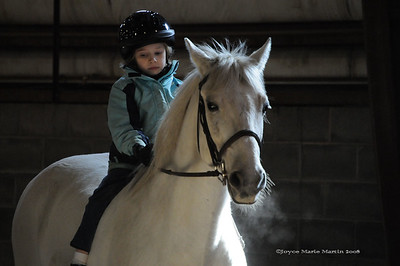 Equestrian Photographs by Joyce Marie Martin