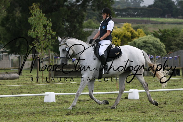 Lysterfield ARC CT and Dressage Day Jan 26 2011